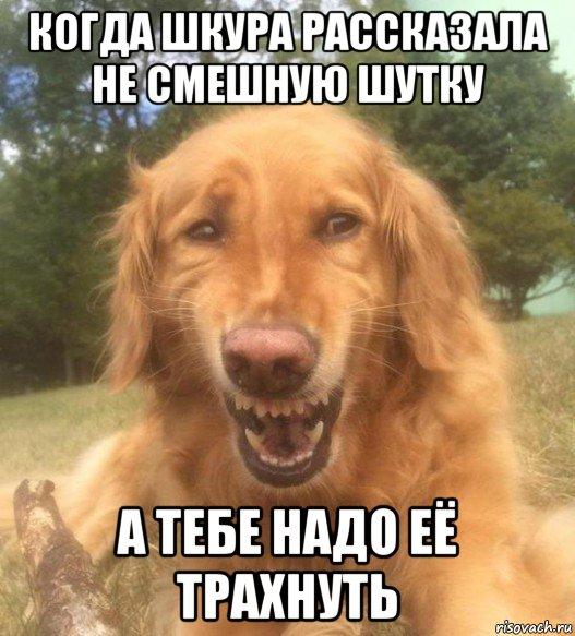 http://masculist.ru/upload/forum/9fab6d2a604a89929f78c0b9e6d8f8ed.jpg